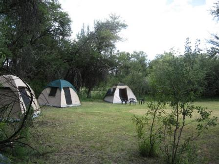 Bush Baby Lodge and Camping Grootfontein, Namibia