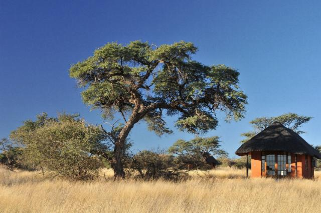 Camelthorn Lodge Namibia