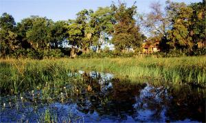Jao Camp Wilderness Safaris Botswana