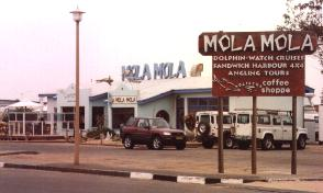 Mola-Mola's office Walvis Bay, Namibia