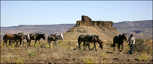 Mule Trails Namibia